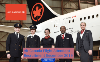 Air Canada Flight Attendant Bilingual (English/Mandarin/Japanese)