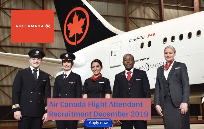Air Canada Flight Attendant Bilingual (English/Mandarin/Japanese)