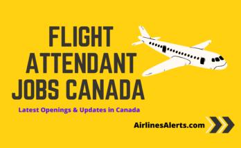 Flight Attendant Jobs Canada 2020 - Latest Flight Attendant/Cabin Crew Jobs Openings & Hiring